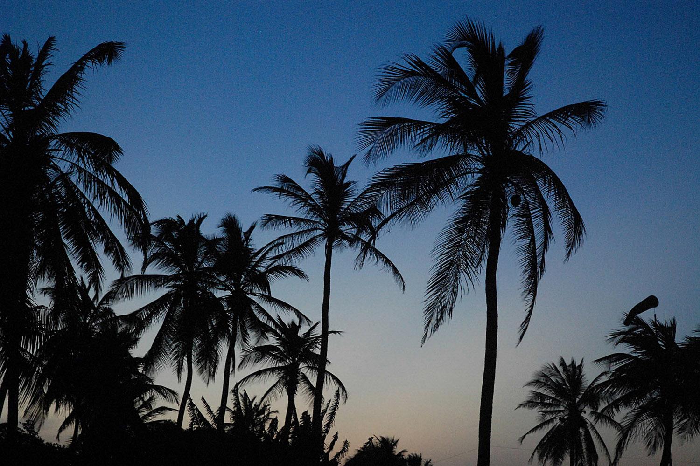 ceu e palmeiras lp 038-2