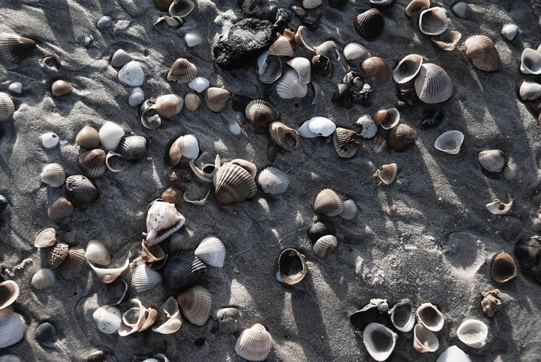 textura de areia lp 079-2